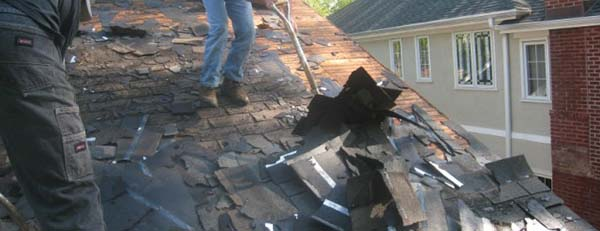 Remove the Old Shingles