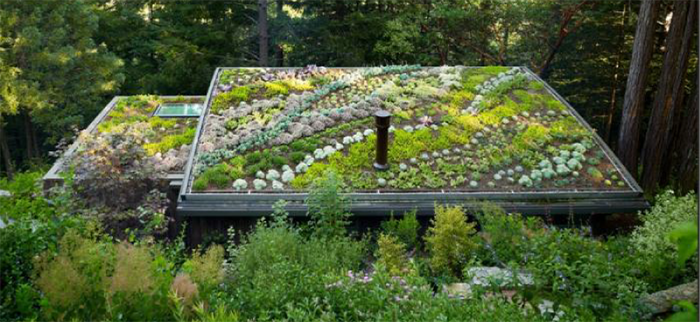 The Real Benefits Of Having A Residential Green Roof